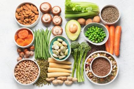 vegan protein powders in bedford nh